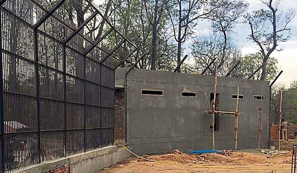 The leopard enclosure at Bir Talab zoo in Bathinda.