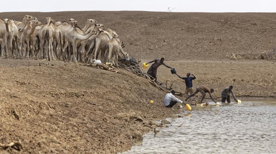 Camel herders scoop up water in plastic buckets from one of the few watering holes in the area, to water their animals near the drought-affected village of Bandarero. (Ben Curtis/ AP)