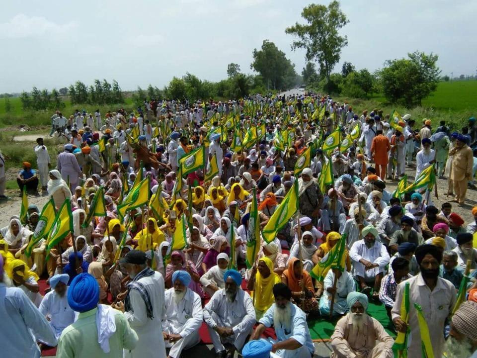 Farmer protest,Mansa Farmers,Punjab