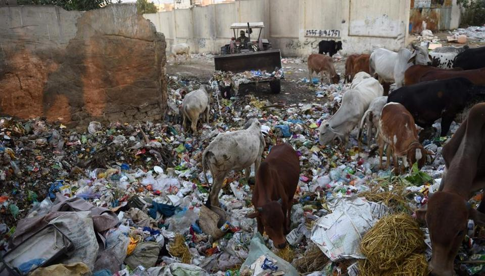 A garbage dump in a residential area of Karachi. The city of 20-25 million people produces roughly 12,000 tonnes of trash daily.