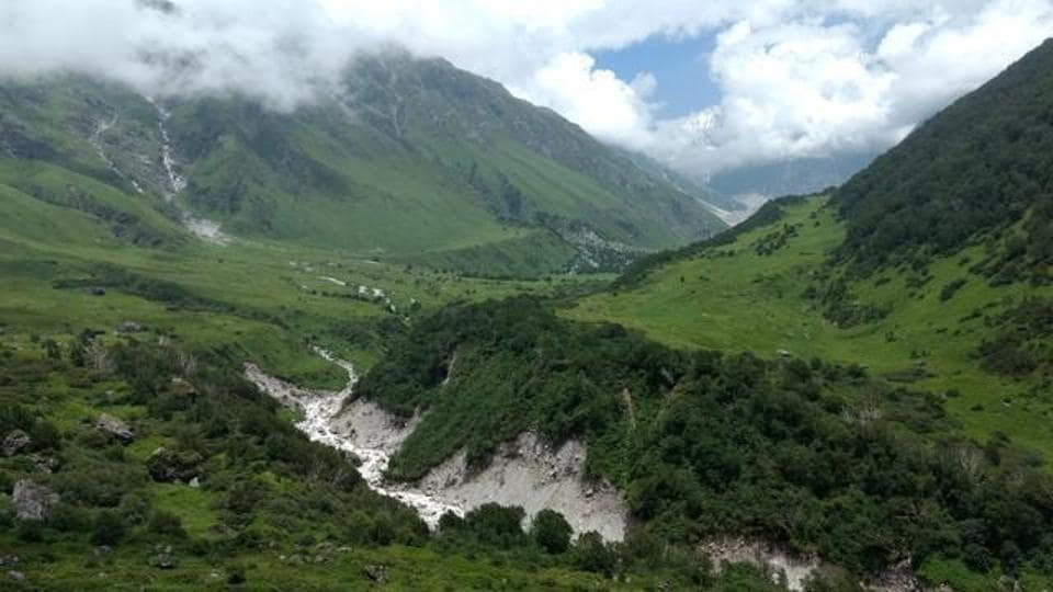 Valley of Flowers,Forest department,Chinese team