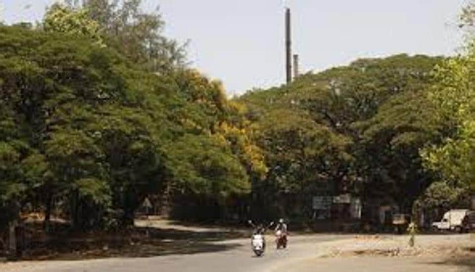 Of the 1,068 hectares under Aarey Colony, the DP has reserved 34.41 hectares for Metro car shed and 113 hectares for a zoo and botanical garden.