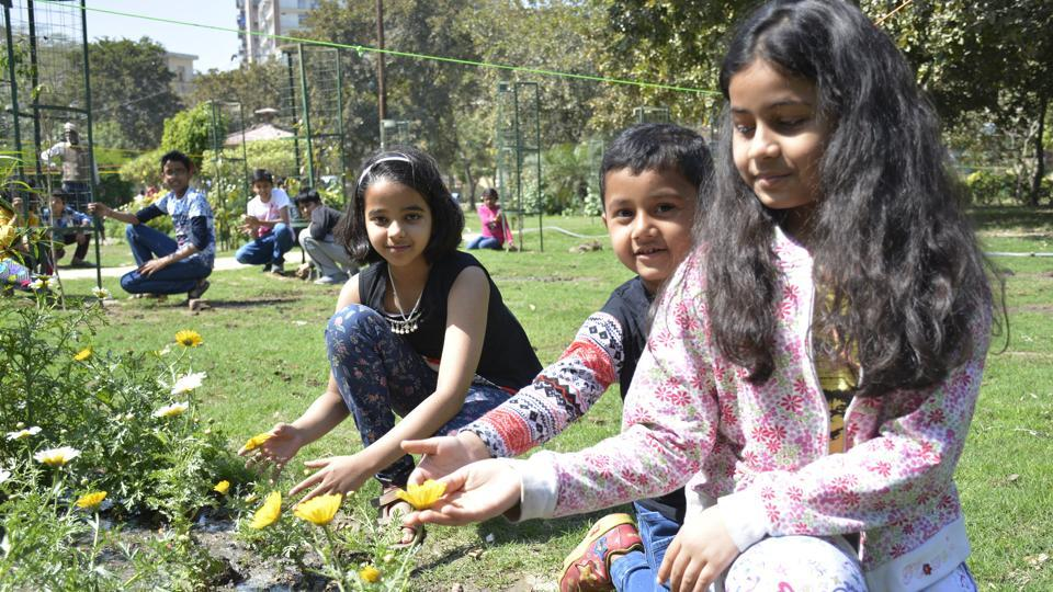 Children have taken up an initiative to plant saplings and grass in Central Park, Sector 4, Vaishali, in Ghaziabad.