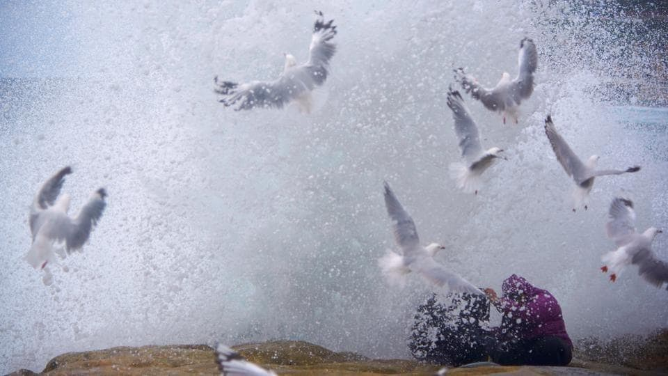 Seagulls and rock-fishing couple, Arie and Zakiyyah Widodo are sprayed by a large wave breaking against the rocks near Sydney's Bronte Beach, Australia. (Aaron Bunch  / REUTERS)