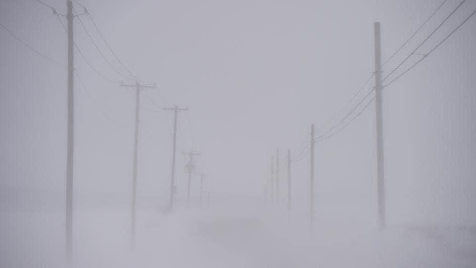 Wind creates near whiteout conditions during a snowstorm in Ephrata, Pennsylvania. A blizzard is forecast to bring more than a foot of snow and high winds to up to eight states in the Northeast region, as New York and New Jersey are under a state of emergency. School districts across the entire region were closed and thousands of flights were cancelled.  (Mark Makela/AFP)