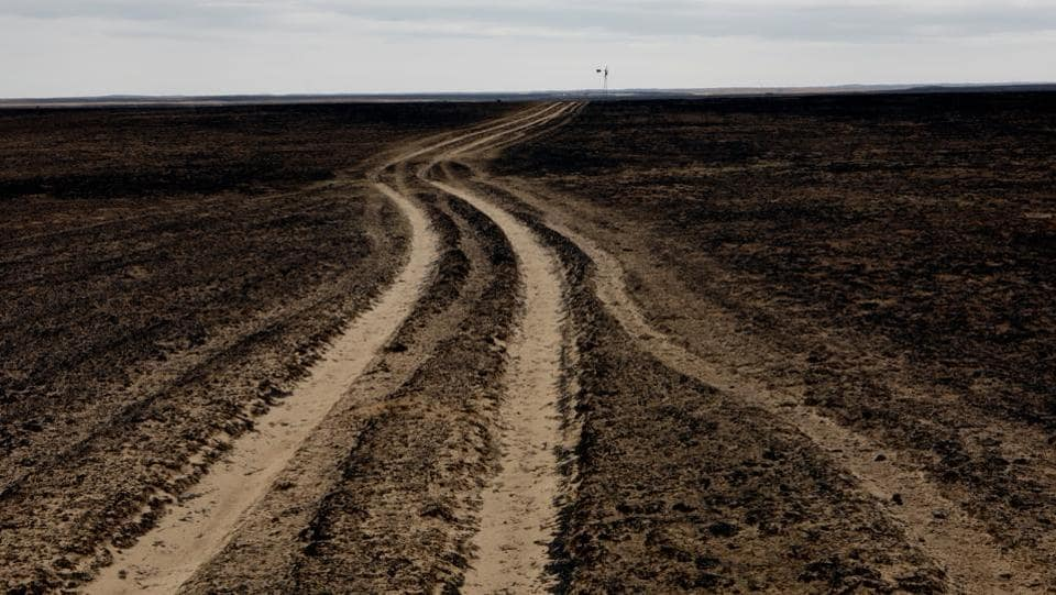 A country road leads through a pasture burned by wildfires near Glazier, Texas. (Lucas Jackson / REUTERS)