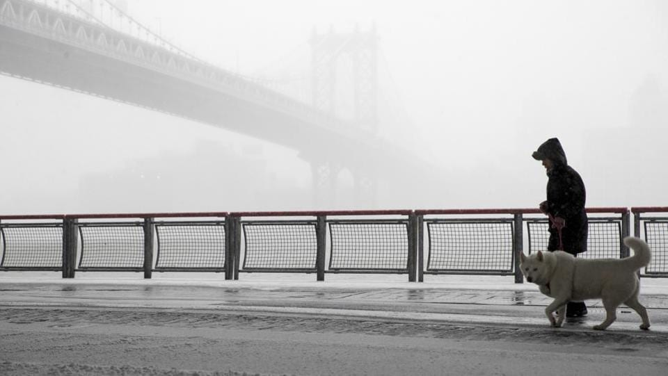 A man walks his dog with the Manhattan bridge during the snowstorm, in New York. (Mary Altaffer/AP)