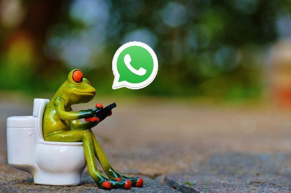WhatsApp,Status feature,text messages