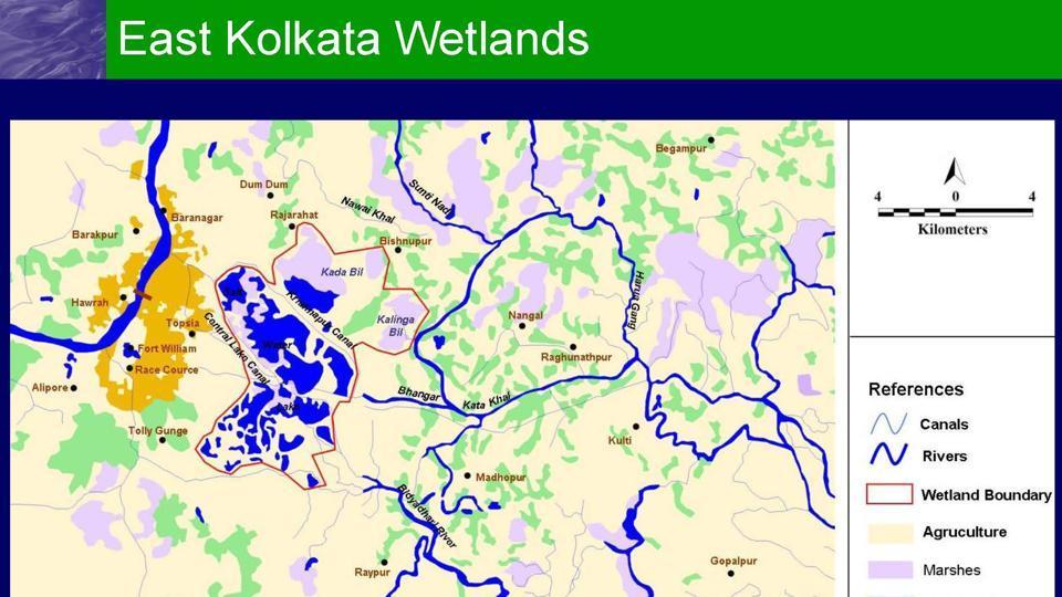 The East Kolkata Wetlands straddles two districts North 24 Parganas and South 24 Parganas.