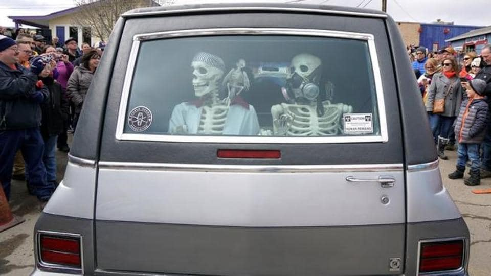 Mock skeletons are pictured in the back of a hearse during the hearse parade.