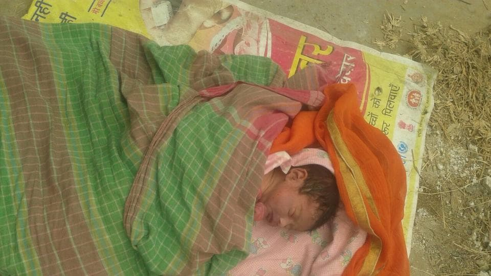 On November 2, 2016, a newborn girl was found abandoned near a gated residential society in Ardee City in Sector 52.