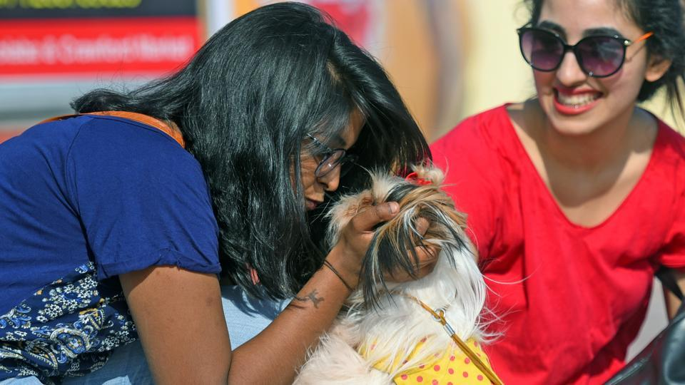 Kiss of love: A woman has a sweet moment with her pet. (Pratik Chorge/HT PHOTO)