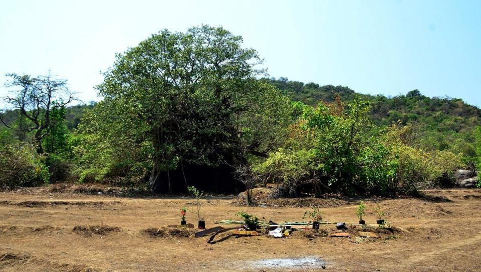 A general view of the location where the body of Danielle McLaughlin was found in Canacona, some 60 km south of Panaji.