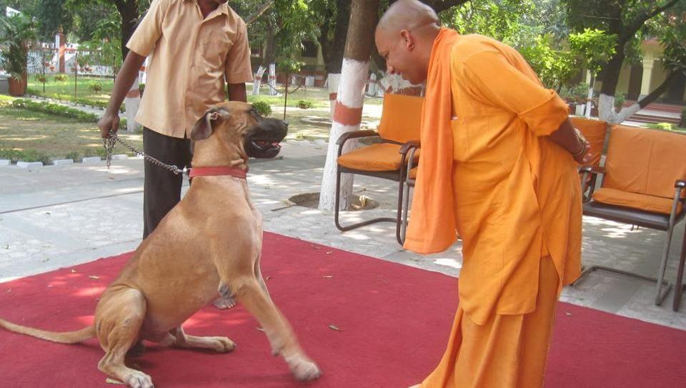 Uttar Pradesh CM,UP CM,Hindutva