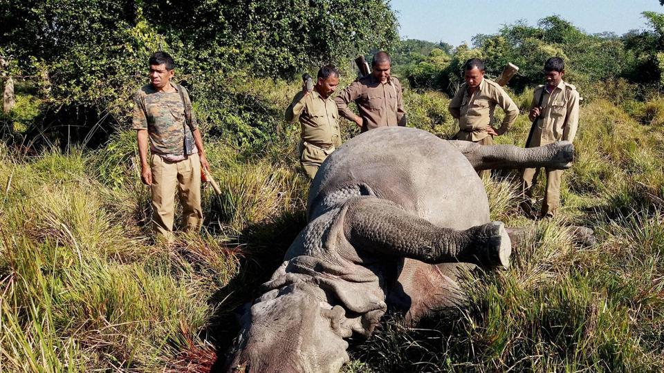 Forest guards in the Kaziranga National Park have been empowered to use firearms without prior sanction.