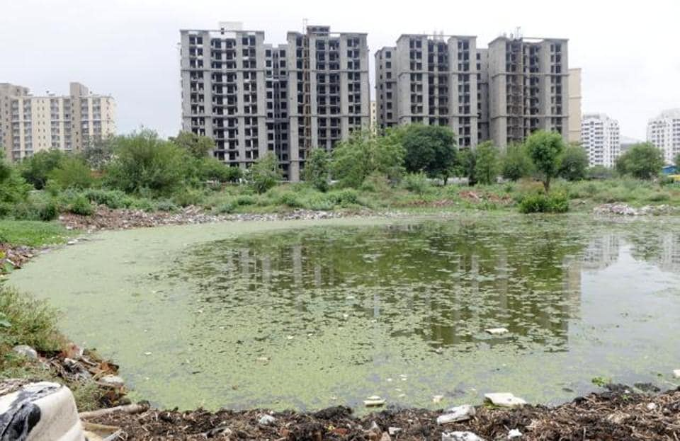 The pollution watchdog is concerned over the dumping of waste and effluents in the city's water bodies.