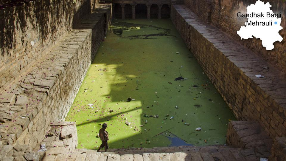 A young boy pictured at Gandhak Baoli, in Mehraulli. According to the DJB official, the water utility has been focusing on water bodies which have sewage inflow from nearby villages. (Vageesh Lall/HT photo)
