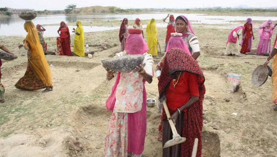 Women work at a MNREGA site in western Rajasthan.