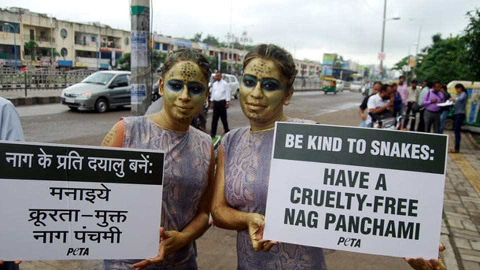 PETA activists campaigning to curb cruelty against snakes in Indore.