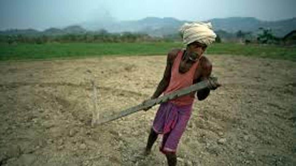 The Gujarat Government on Friday informed that state Legislative Assembly that as many as 91 farmers have ended their lives for various reasons across the state in the last five years.