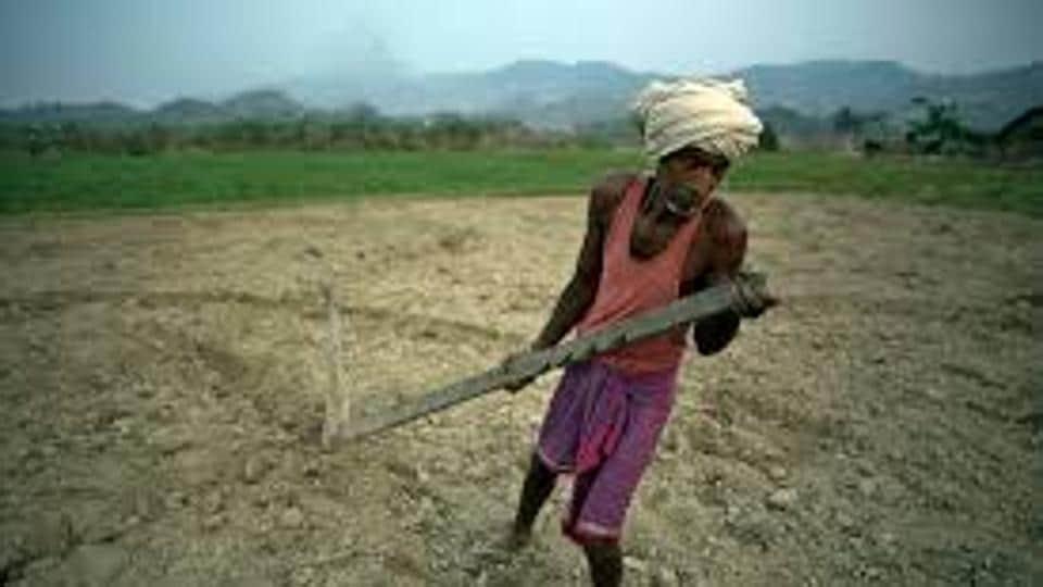 Farmer suicide,Gujarat,Gujarat farmer suicide