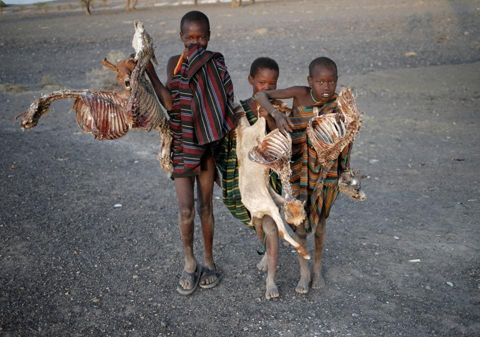 Boys carry carcasses of goats in a village near Loiyangalani. (Goran Tomasevic / Reuters)