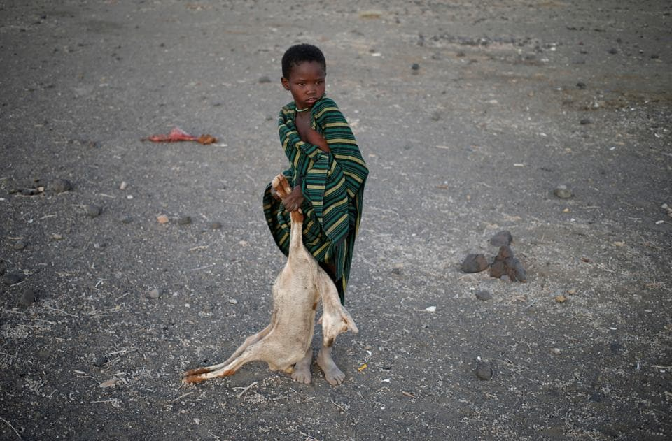 A boy carries a carcass of a goat in a village near Loiyangalani, Kenya. Villagers in northern Kenya have begun to burn piles of animal carcasses, hoping to head off an outbreak of disease as their livestock starve to death in the region's worst drought in five years. (Goran Tomasevic / Reuters)