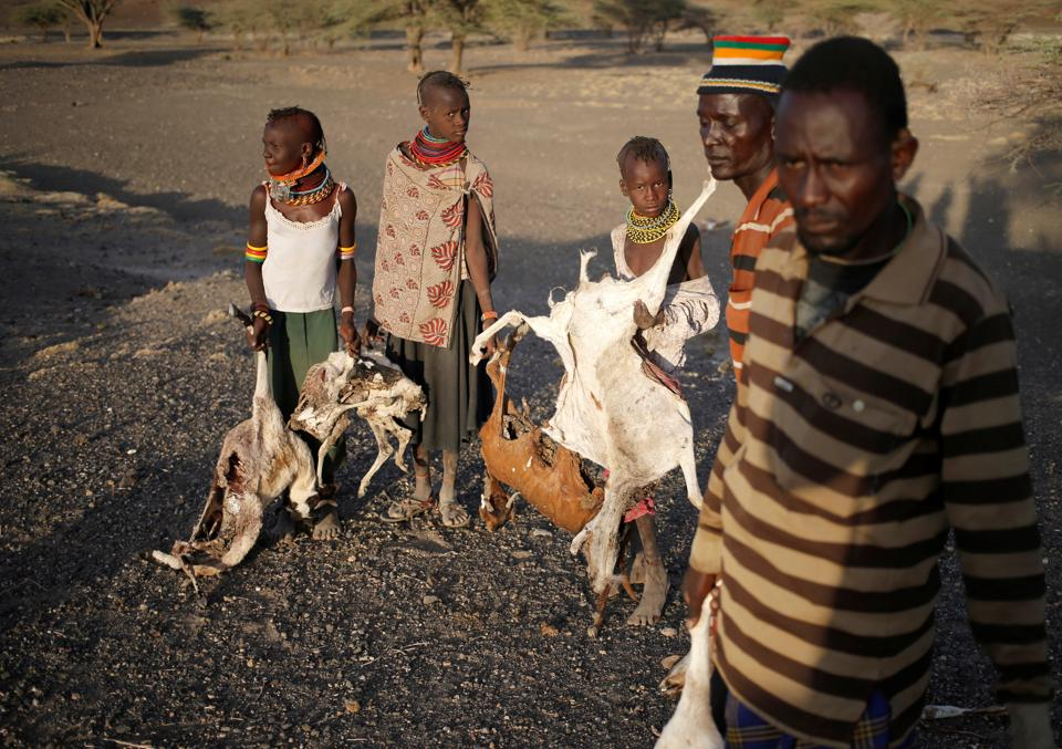 Turkana's collect carcasses of goats to be burned in a village. (Goran Tomasevic / Reuters)