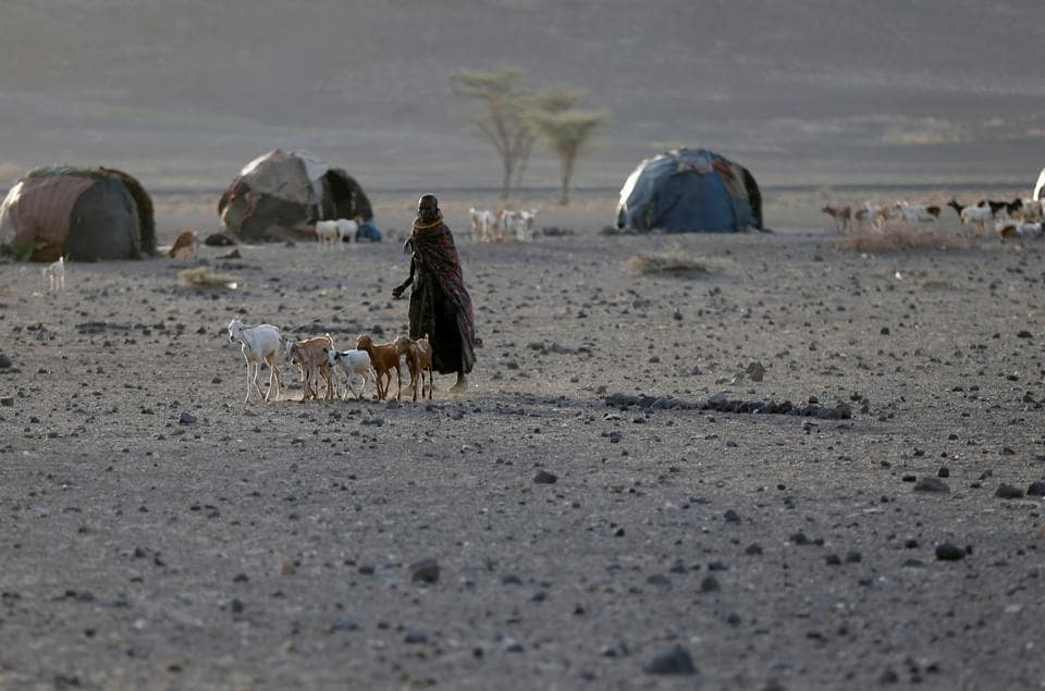 A Turkana tribeswoman walks with goats in a village near Loiyangalani, Kenya, March 21, 2017. Picture taken on March 21, 2017. REUTERS/Goran Tomasevic (REUTERS)