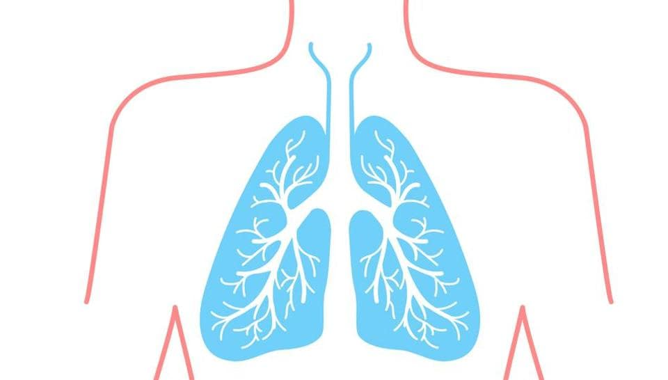 Study Shows Potential Of Stem Cell Therapy In Repairing Lung Damage