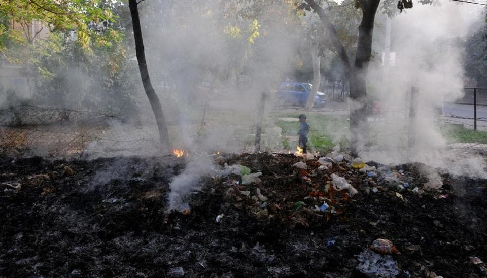 Waste and dry leaves being burnt in Sector 30 green belt on Saturday.