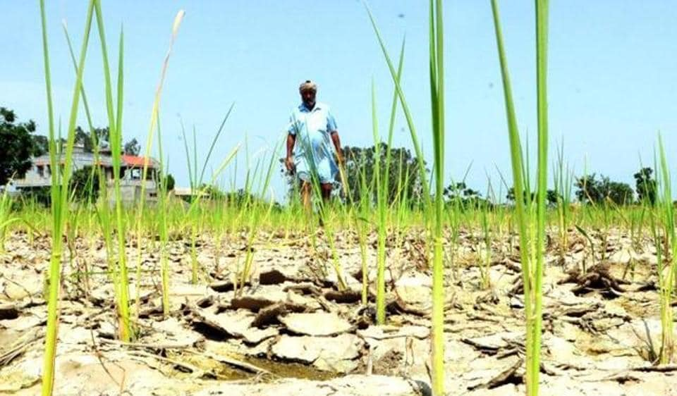 India can expect a poor monsoon and there is likelihood of drought in some parts of the country.