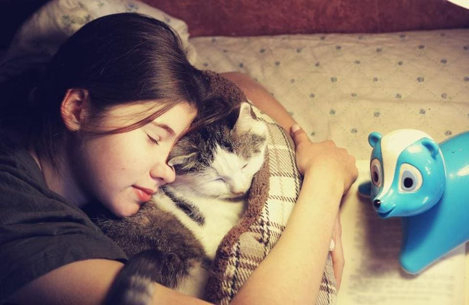 Your cat needs you more than you know.
