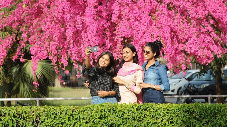 At Panjab University amid the colours of spring, in Chandigarh. (AnilDayal/HT)