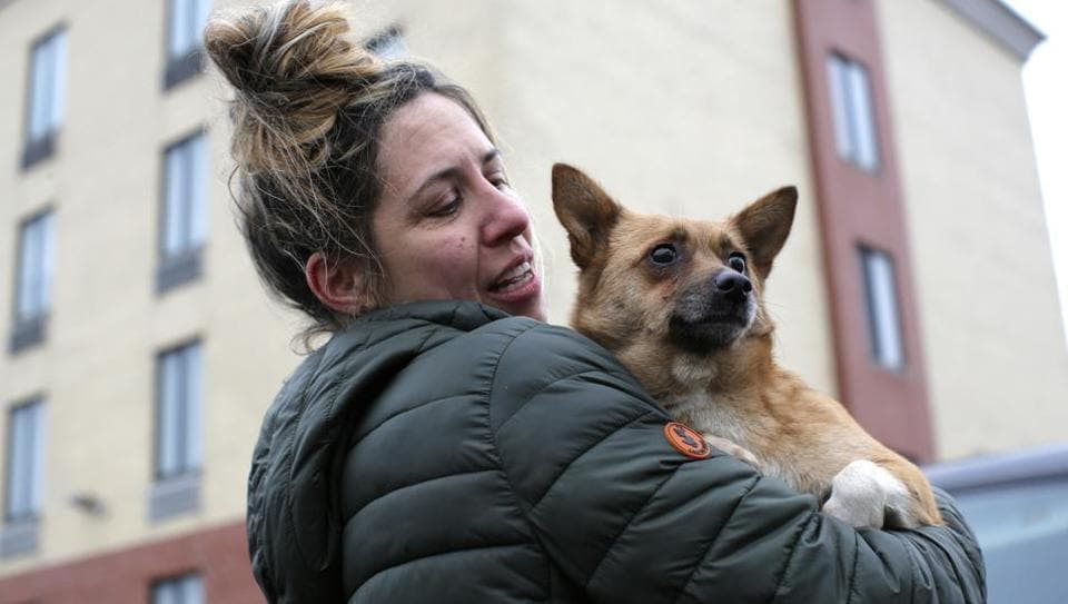 Animal Haven volunteer Nicole Smith carries a dog rescued from a South Korean dog meat farm by Humane Society International (HSI). (Andrew Kelly / AP Images )