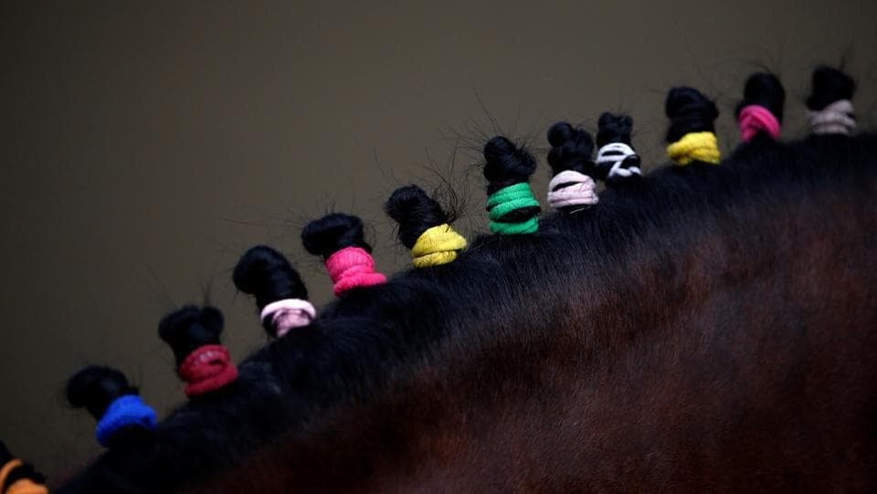 Hairs of a horse tied with ribbons are pictured during the religious Ghode Jatra festival, organised by the Nepal army. It is regarded as one of the oldest festival in the country.  (Navesh Chitrakar/REUTERS)