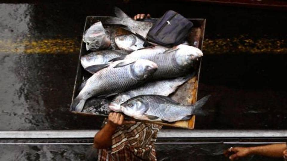 Sale of fish has increased in Lucknow after the government's crackdown on abattoirs.