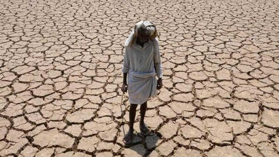 mumbai,mumbai news,farmer suicides in maharashtra