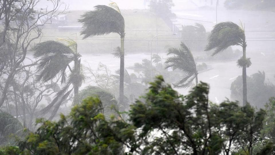 Strong wind and rain from Cyclone Debbie is seen effecting trees at Airlie Beach, located south of the northern Australian city of Townsville. (AAP/Dan Peled/via REUTERS)