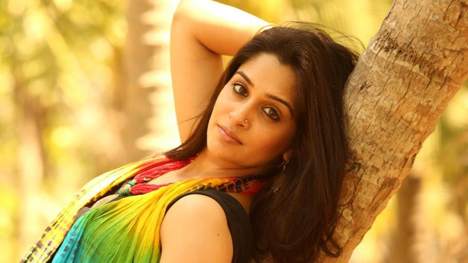 Dipika Kakar feels that majority of viewership for shows on Indian TV comes from rural areas.