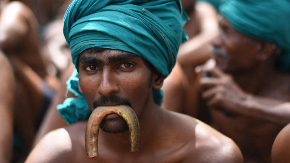 A farmer enacts eating a snake as a form of protest as they have nothing to eat due to farm distress. (Ravi Choudhary/HT PHOTO)