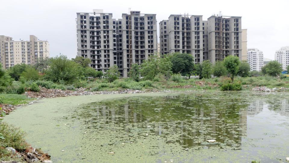 revival of ponds