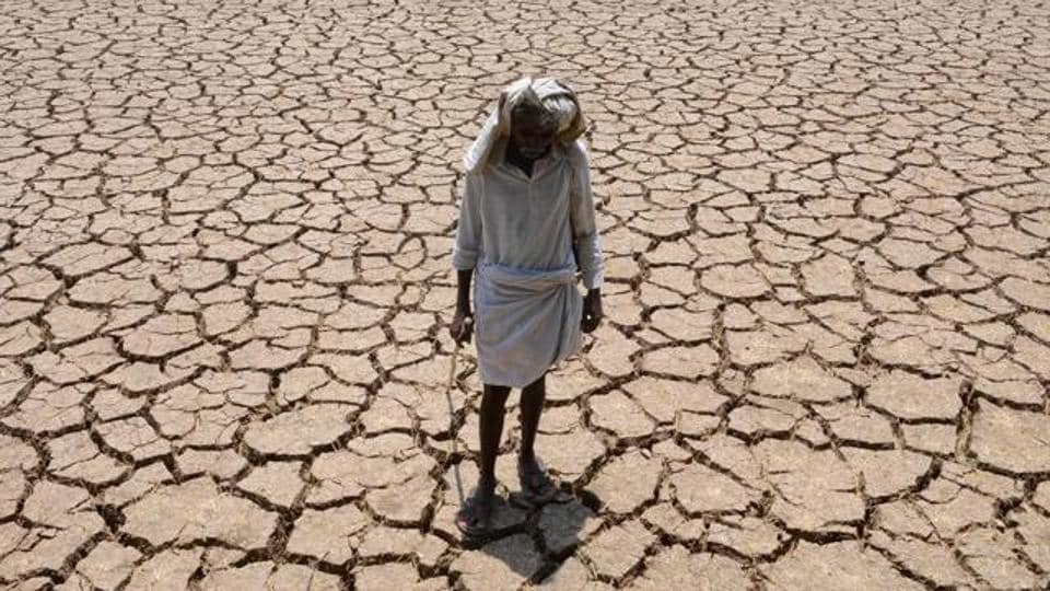 File photo of a farmer in his dried up cotton field in Nalgonda east of Hyderabad in April 2016.