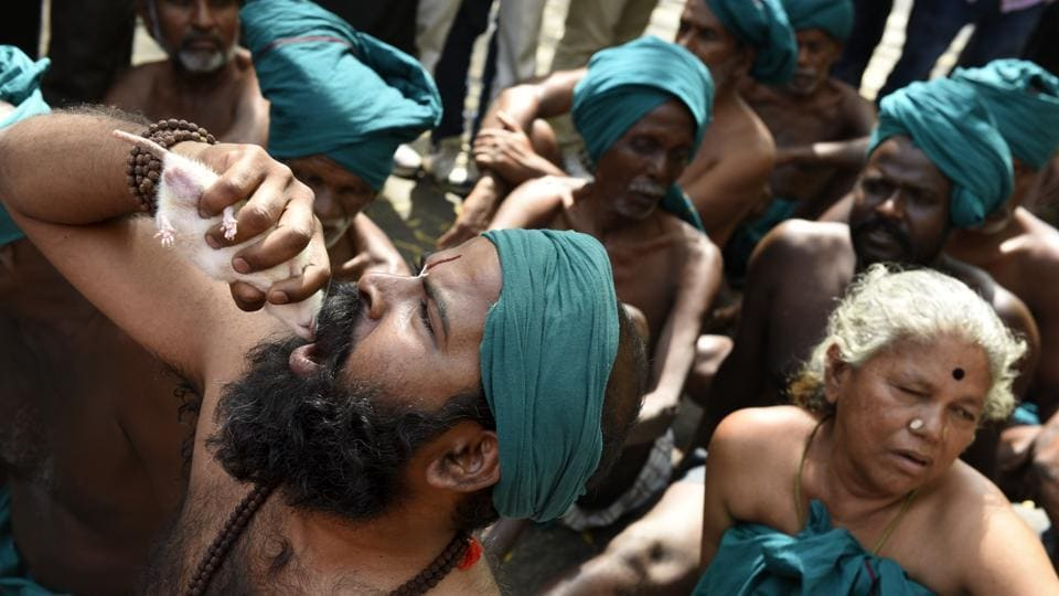 Farmers from Tamil Nadu stage a protest at Jantar Mantar by holding living mice in their mouths to demonstrate that they will have to feed on them if the government fails to declare drought relief packages and waiver loans for the farmers from the state. (Saumya Khandelwal/HT PHOTO)