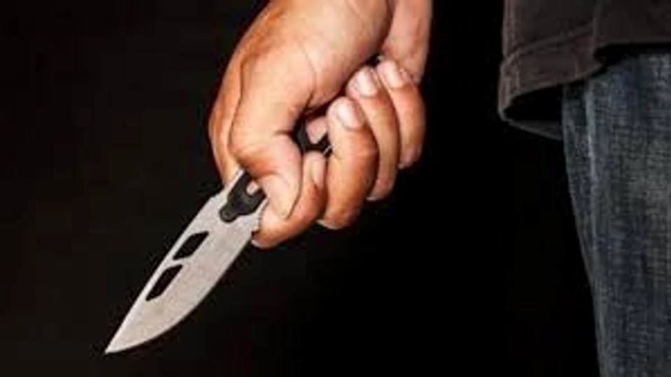 Ludhiana,women stabbed,property dispute