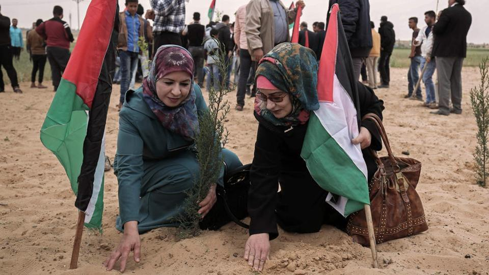 Palestinian women holding their national flag plant olive trees to mark Land Day near the Israeli border with east Rafah in the southern Gaza Strip . (SAID KHATIB / AFP)