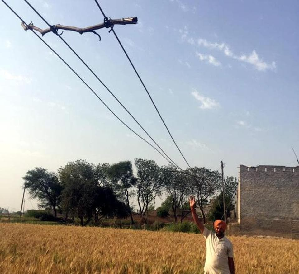 President of the district unit of the Jamhoori Kisan Sabha Iqbal Singh Phaphre showing the hanging high­tension wire over a field in Mansa on Friday..