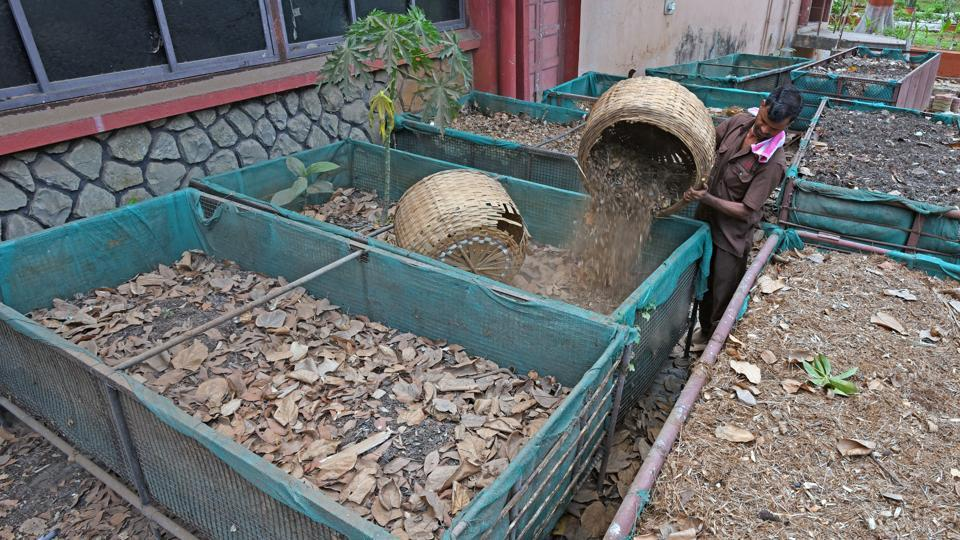 Compost,Chemical,Technology