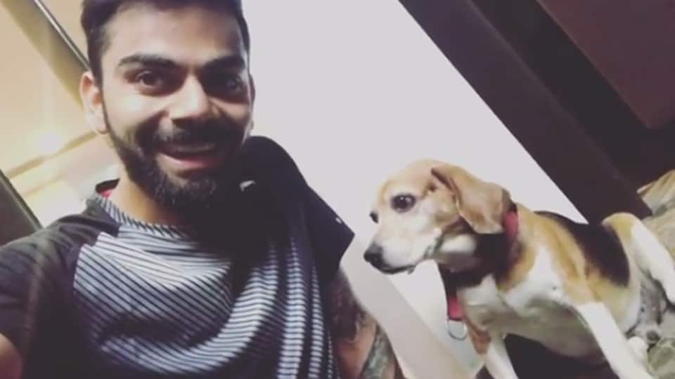 Virat Kohli posted a picture with his dog on Twitter as he prepares for the upcoming Indian Premier League.