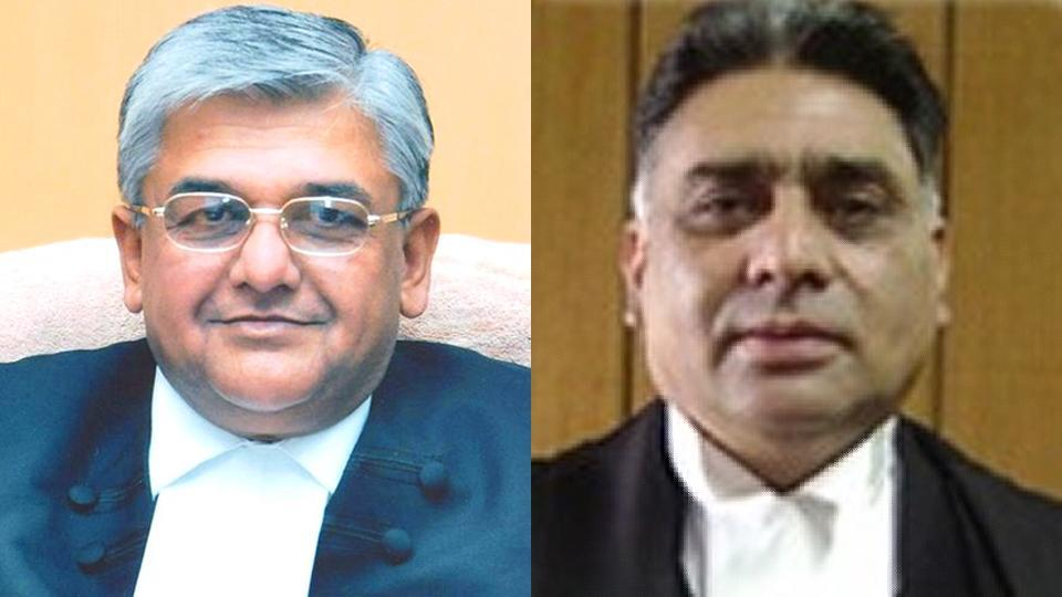 Justice Alok Singh and Justice Rajiv Sharma have delivered several landmark judgements that have made them no less than environment crusaders.